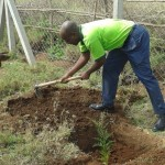 Mr. Japheth Shinjeje also planting his tree
